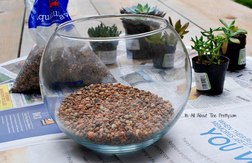 Terrarium gravel