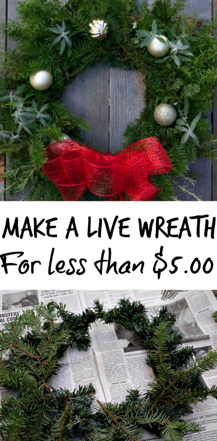 Make a beautiful live wreath for under $5.00!