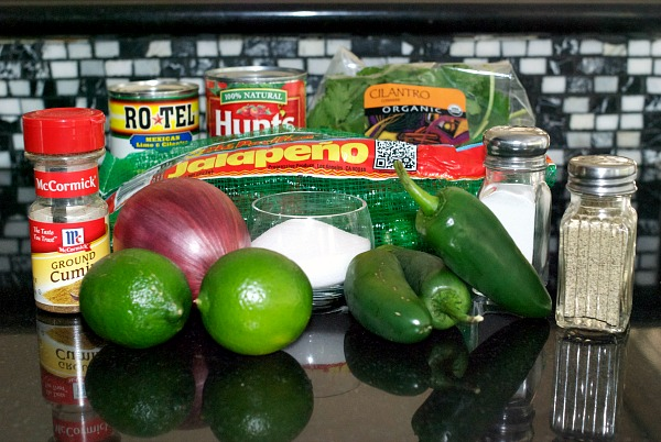 Restaurant Style Salsa Ingredients