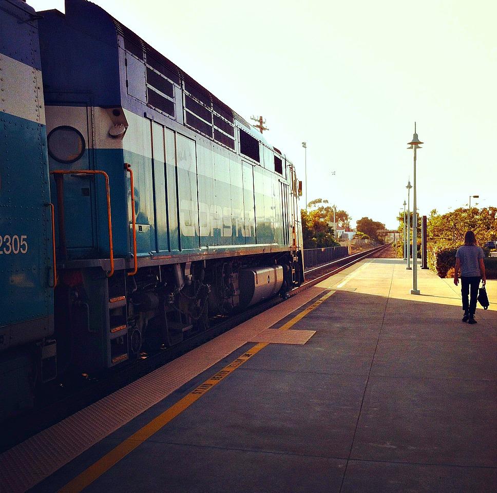 Carlsbad train