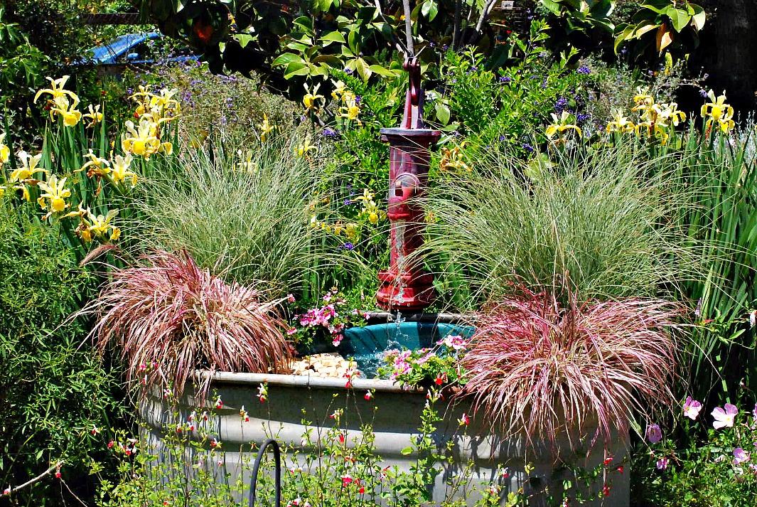 San Juan Capistrano Garden Tour House 4