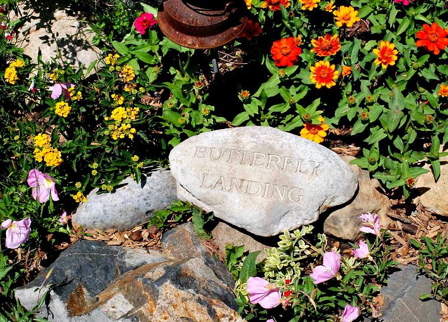 San Juan Capistrano Garden Tour House 4 - 6