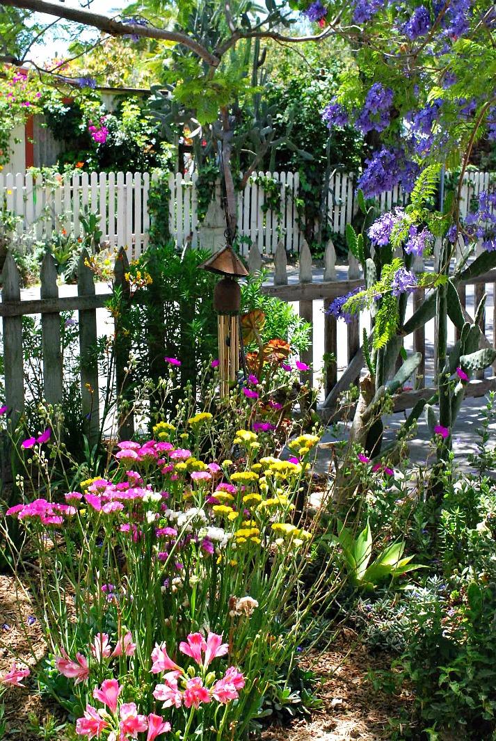 San Juan Capistrano Garden Tour House 4 -9