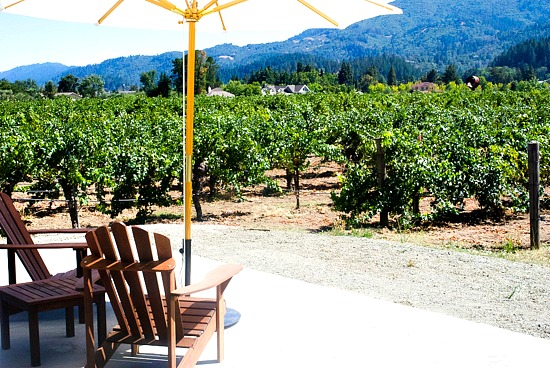 Corison Winery view