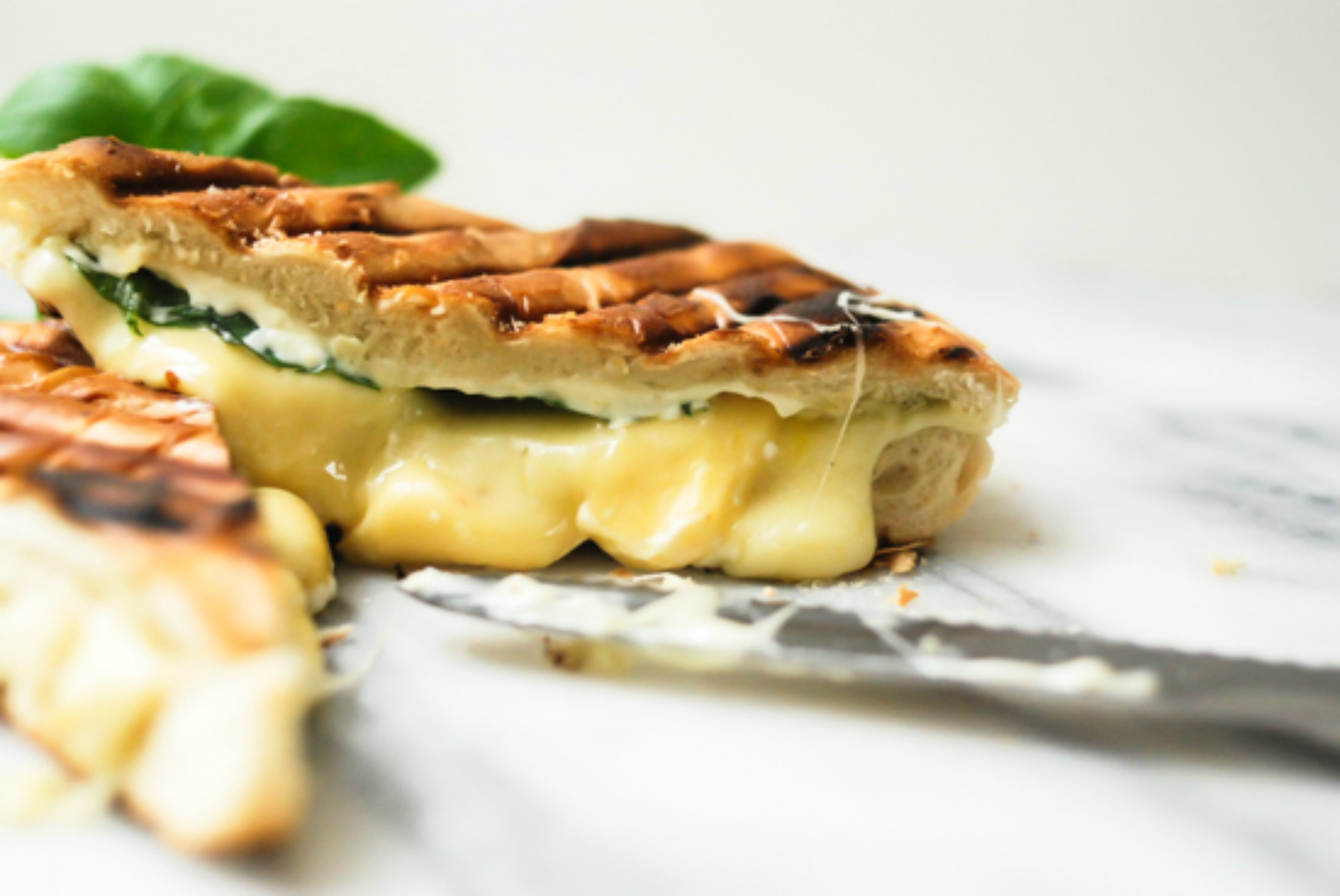 Grilled Cheese Panini with basil
