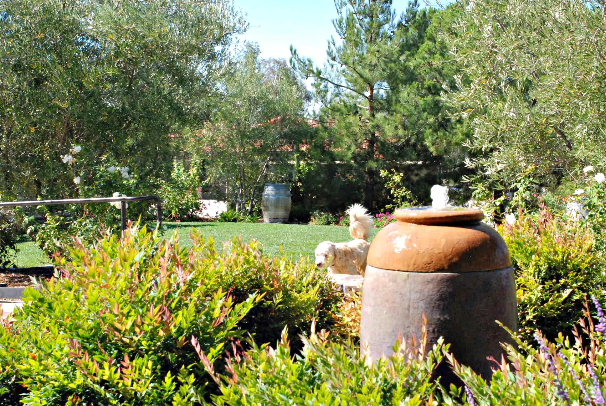 Miramonte garden area