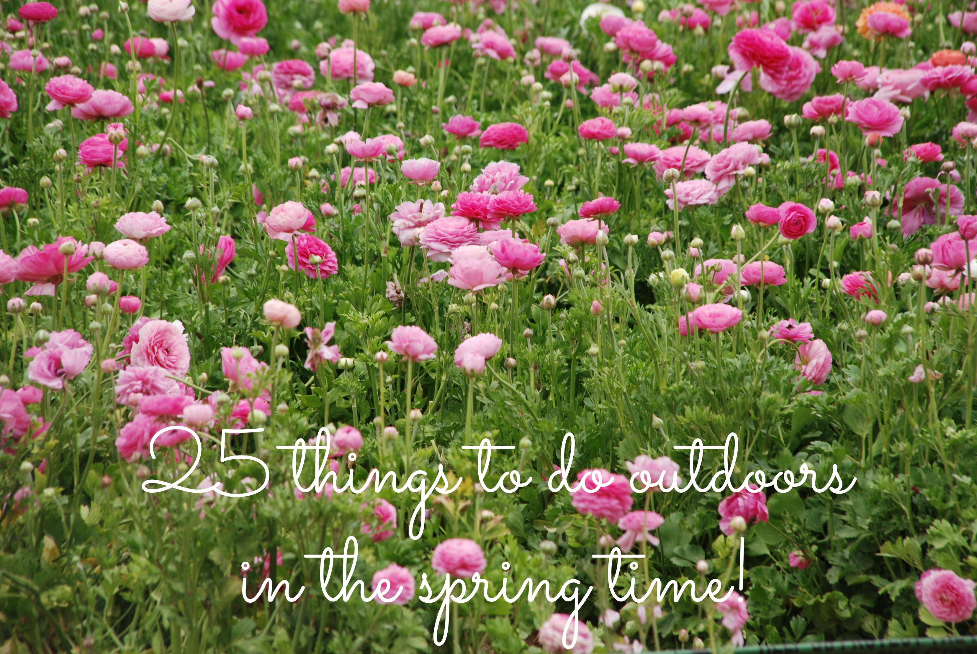 Spring time, 25 fun things to do outdoors