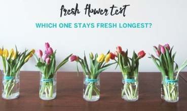 Links I Love, how to keep flowers fresh, apartment therapy